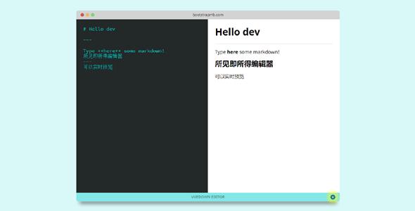 Vue.js代码实时预览编辑器
