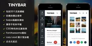 响应式Html5手机移动端网站App模板