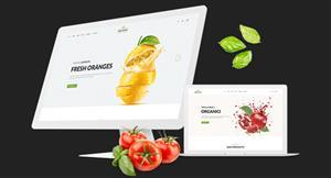 HTML5精美的有機生態食品商城模板響應式