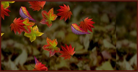 webkit树叶飘落背景特效