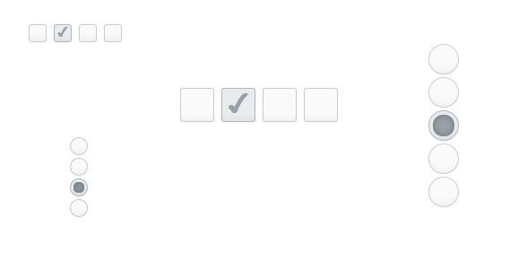 CSS3改变Checkbox和Radiobox按钮的样式