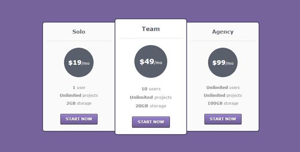 简约的CSS价格表清单源码下载