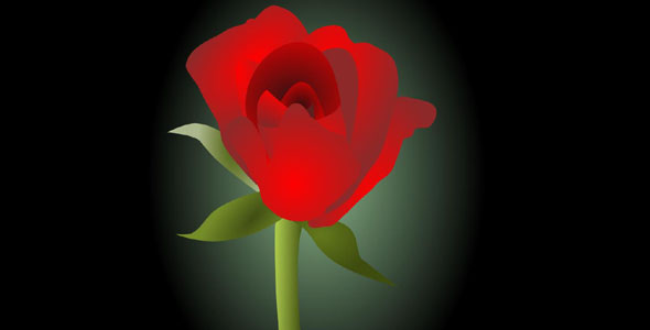 SVG玫瑰花开动画特效代码