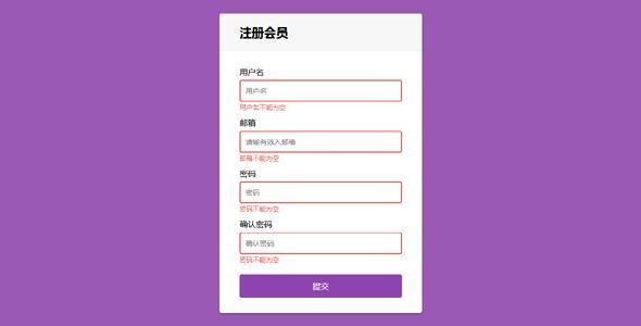 js注册表单带输入验证