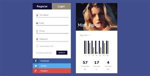 个人统计效果登录页面模板