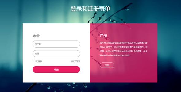 html登录表单和弹出注册小部件