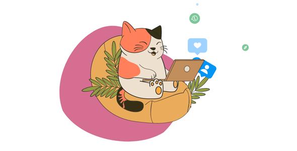 react小猫上网动画网页代码源码下载