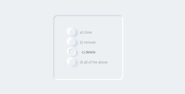 css立体样式单选框样式