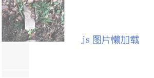 js图片懒加载插件