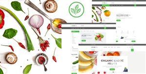 绿色农产品水果电商购物网站前端模板