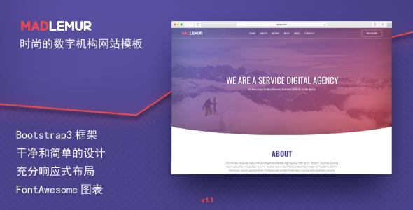 时尚的数字服务机构网站前端模板