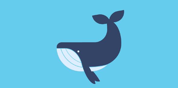 css+html鲸鱼网页代码源码下载