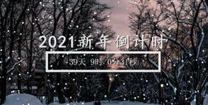 canvas 2021新年倒计时下雪背景