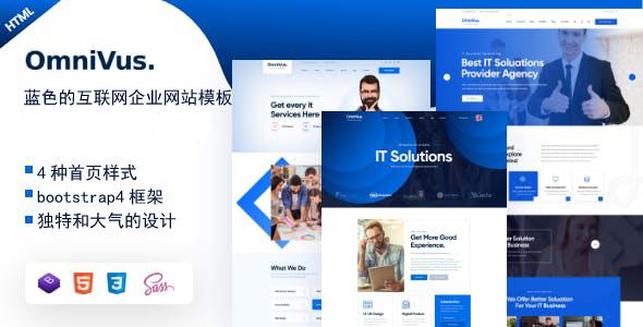 IT公司互联网服务企业网站模板源码下载