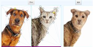 vuejs图像模拟变形特效